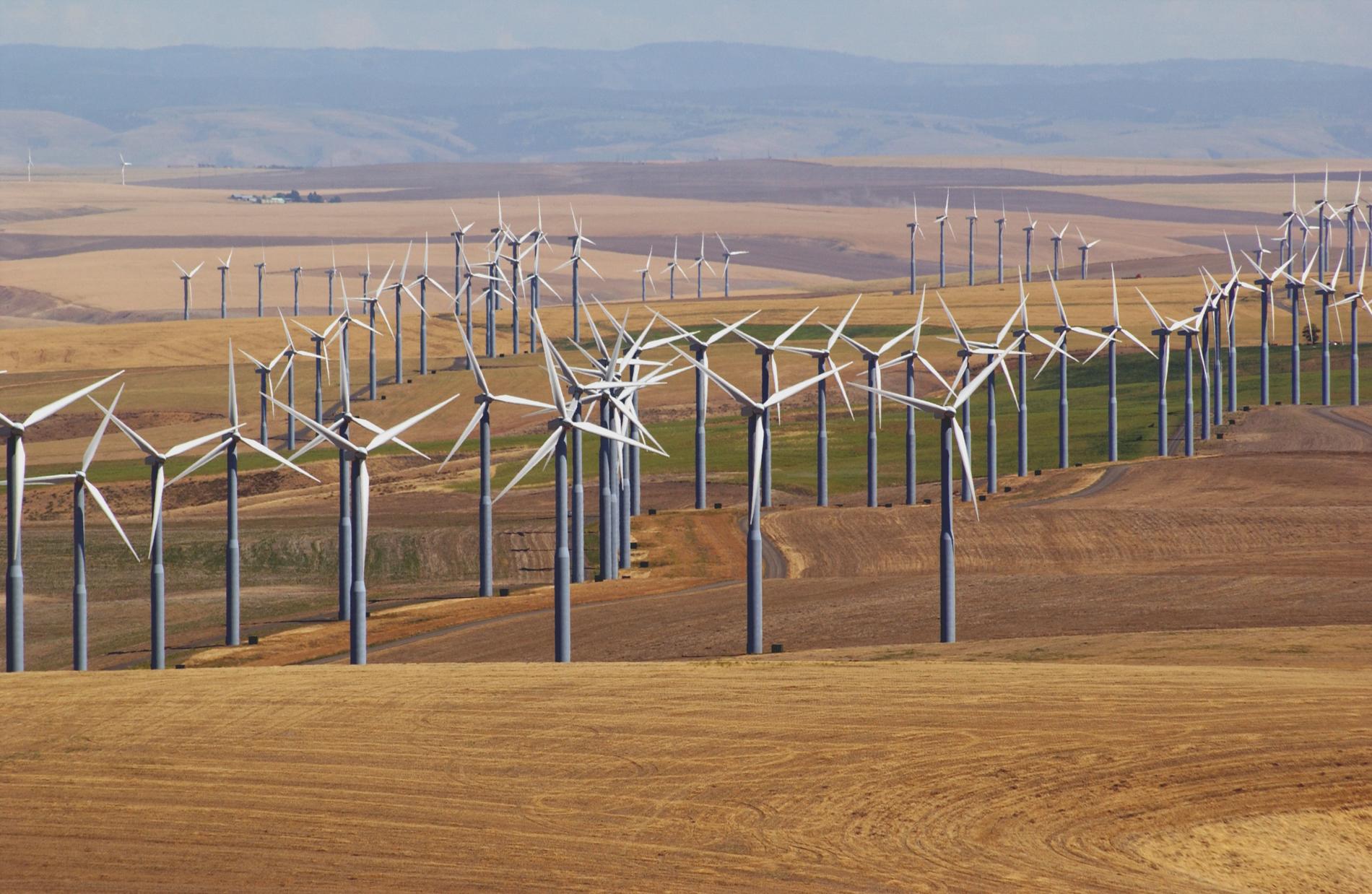 Windmills over Walla Walla