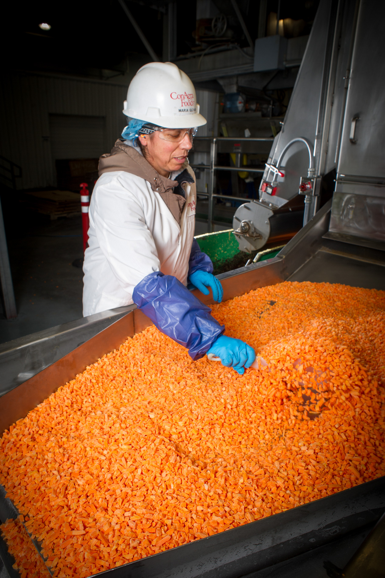 Carrot Processing