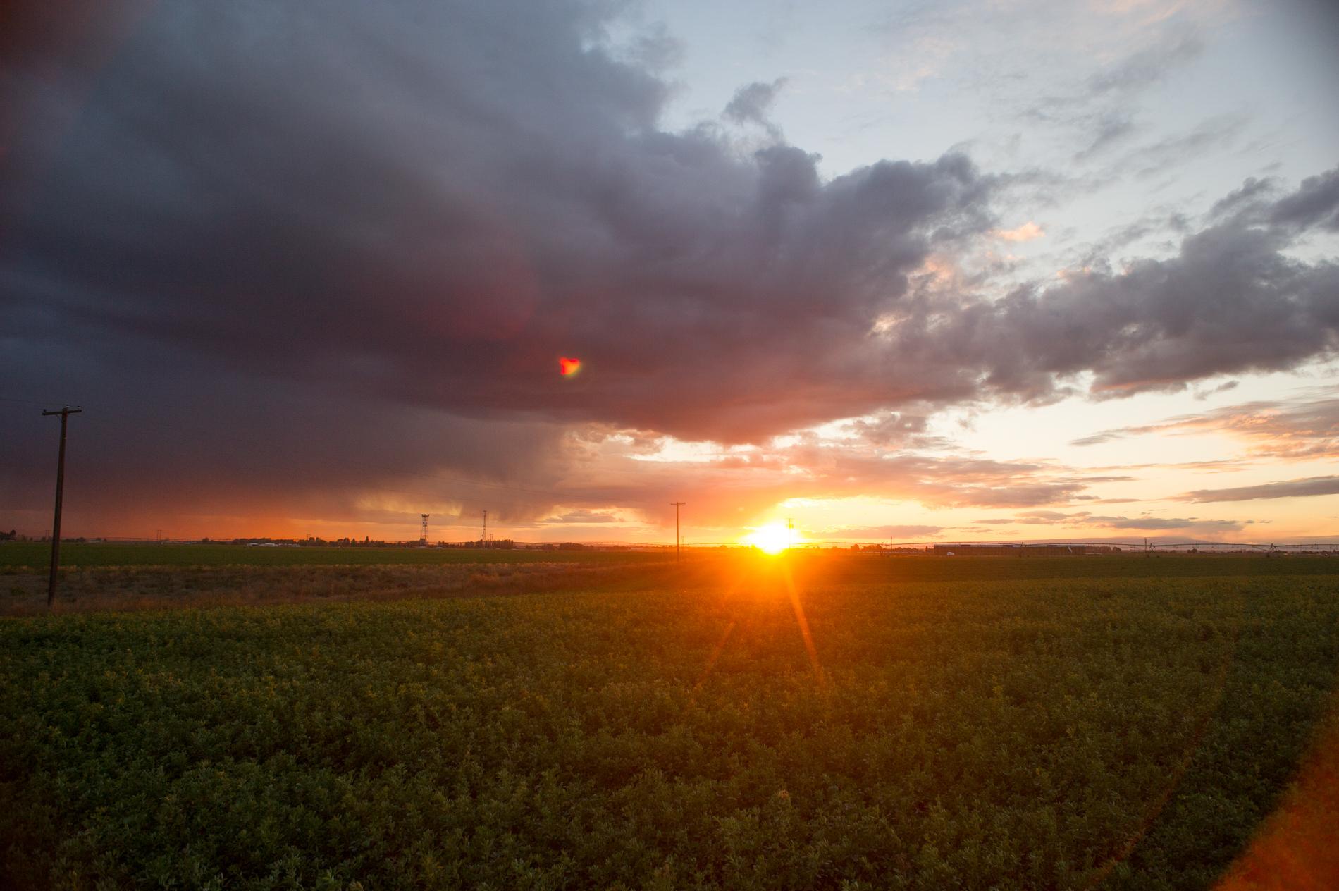 Sunset over Alfalfa