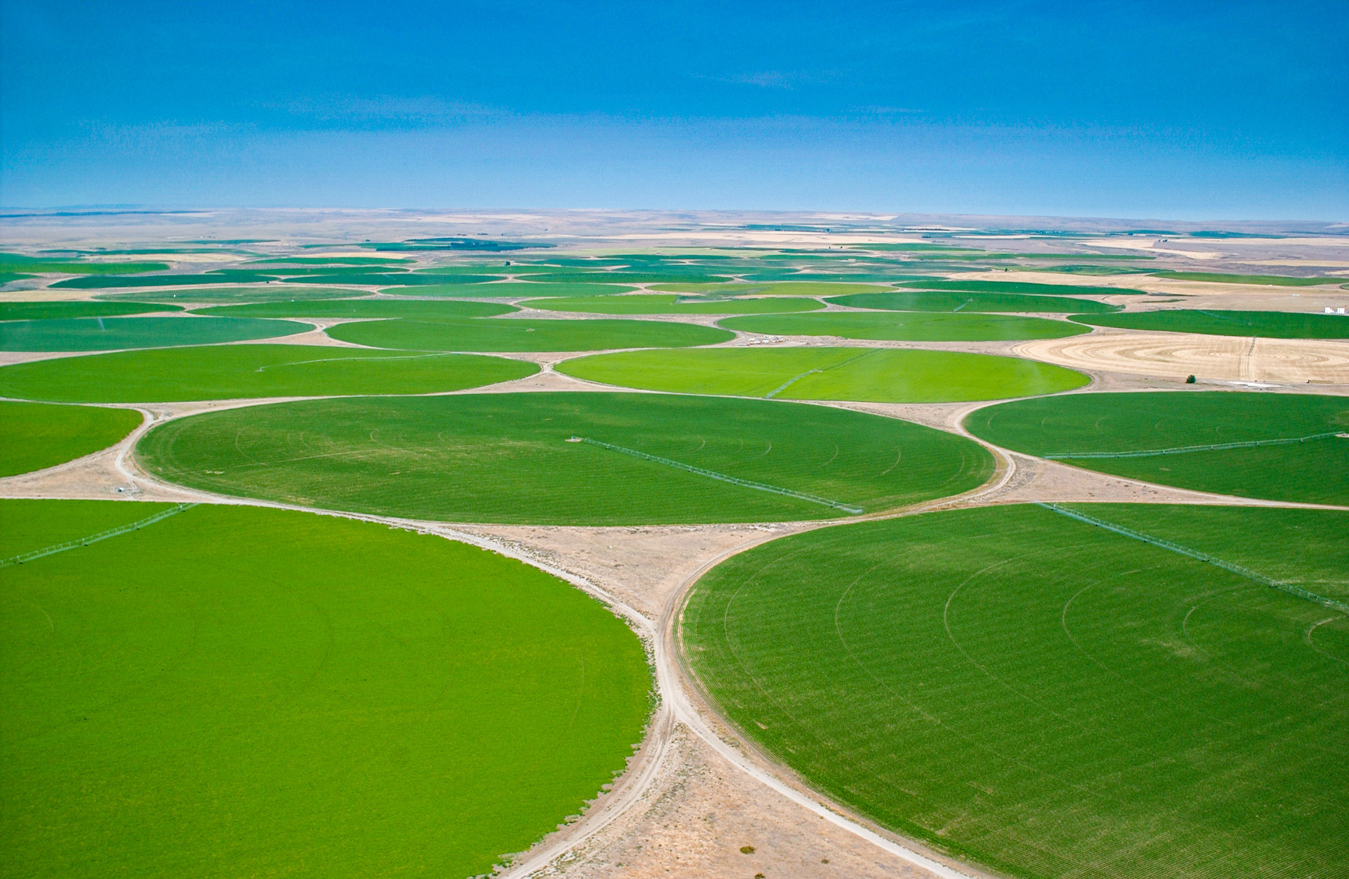 Large-Scale Farming