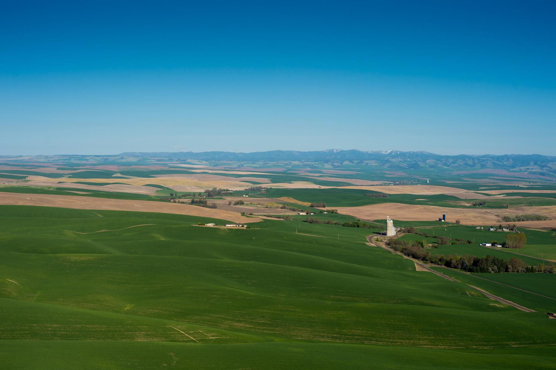 Walla Walla Valley