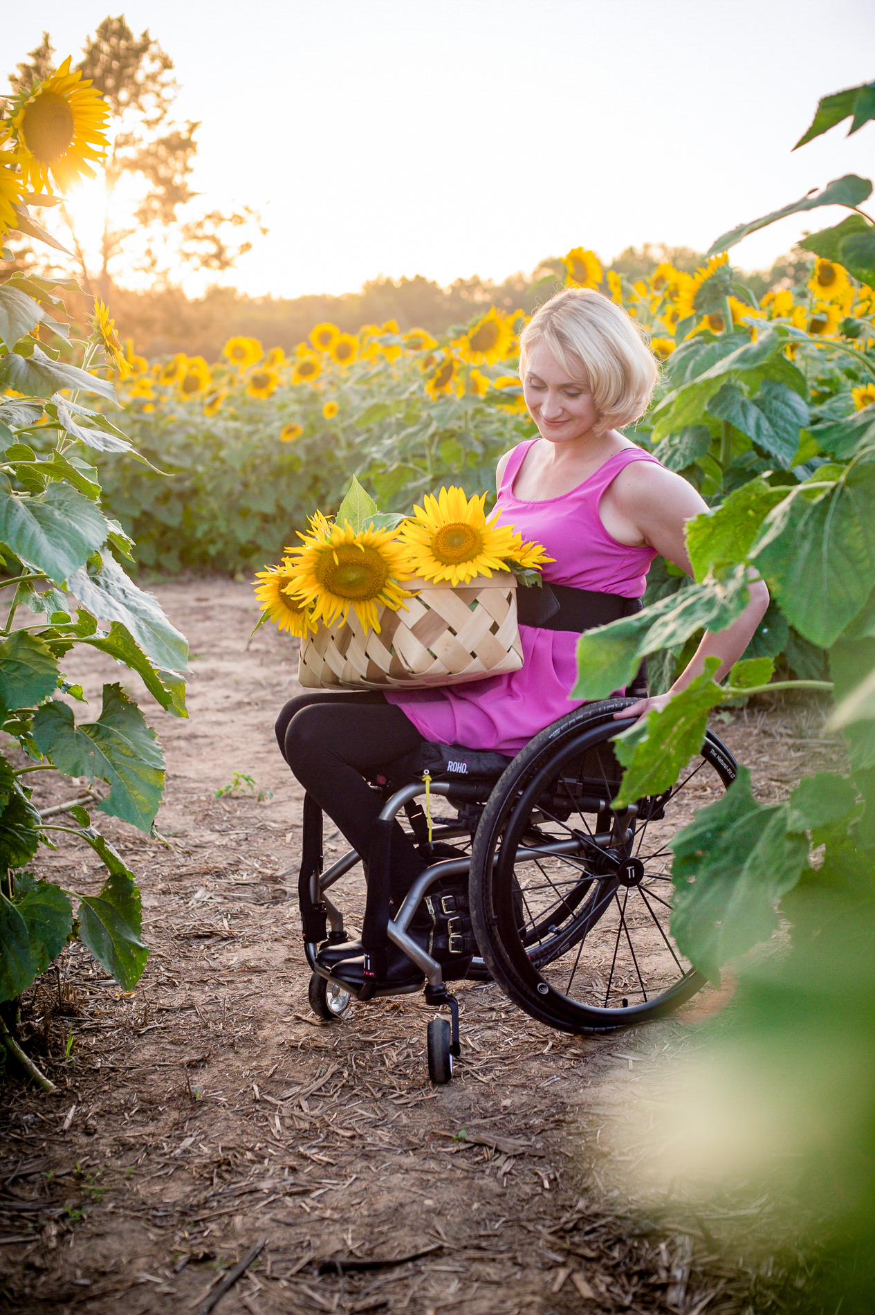 Wheelchair in the Sunflowers
